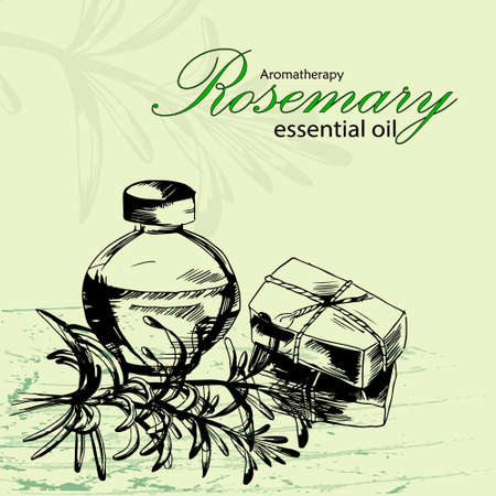masseuse: illustration of essential oil of rosemary in the style