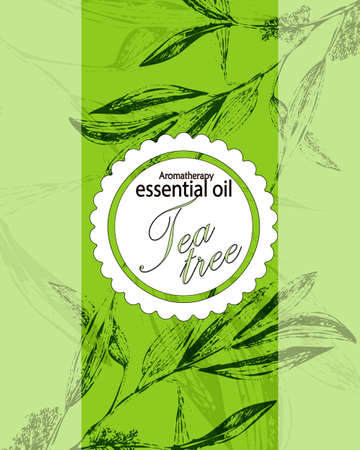 green tea leaves: label for essential oil of tea tree with  leaves Illustration