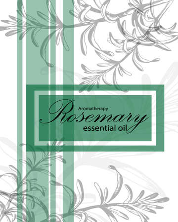 essential oil: label for essential oil of rosemary with  herb Illustration