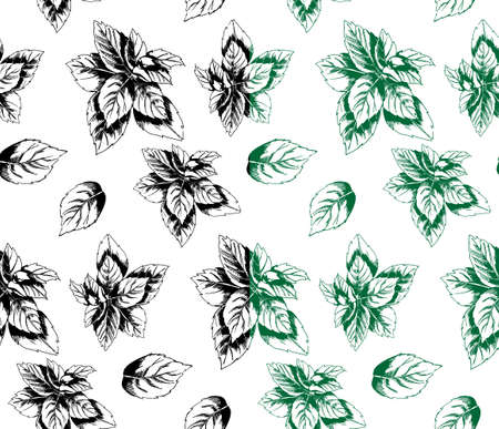 peppermint: seamless pattern of peppermint in the style of hand drawn Illustration
