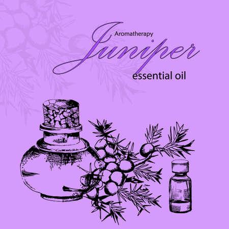 illustrazione vettoriale di olio cosmetico di ginepro in stile disegnato a mano