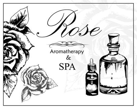 vector illustration of essential oil of rosei in the style of hand drawn Illustration