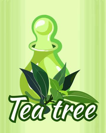 tea tree: vector illustration of tea tree essential oil bottle  the concept of spa procedure  massage with essential oil Illustration