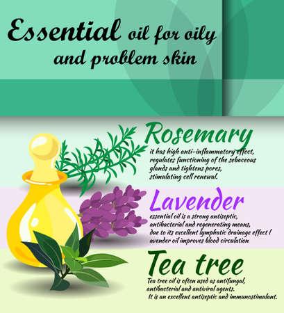 tea tree: description of useful properties of rosemary, lavender, tea tree essential oils  care for oily skin