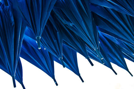 blue umbrellas