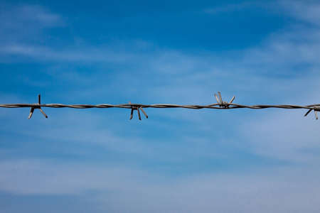 barbed wire Stock Photo - 13060360