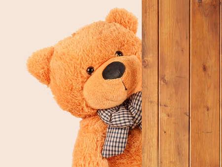 fluffy plush teddy bear overside wooden board