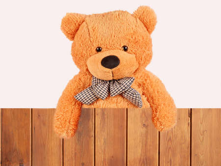 to tie: fluffy plush teddy bear over wooden fence, studio shot