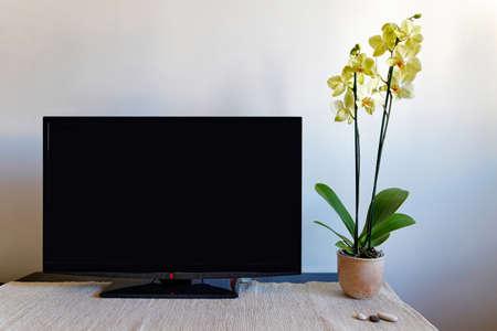 Wohnzimmer mit TV und Orchidee Standard-Bild