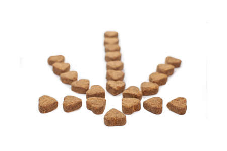 Hemp dog treats laid out in the shape of a cannabis leaf provide natural medicine for pets instead of prescription pills from a veterinarian to help calm behaviour, relieve pain, and inflammation