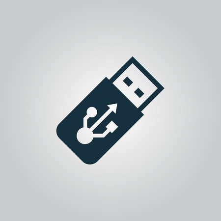 gigabytes: usb flash drive. Flat web icon, sign or button isolated on grey background. Collection modern trend concept design style vector illustration symbol