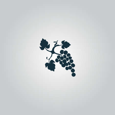 peasant household: Bunch of grapes. Flat web icon or sign isolated on grey background. Collection modern trend concept design style vector illustration symbol