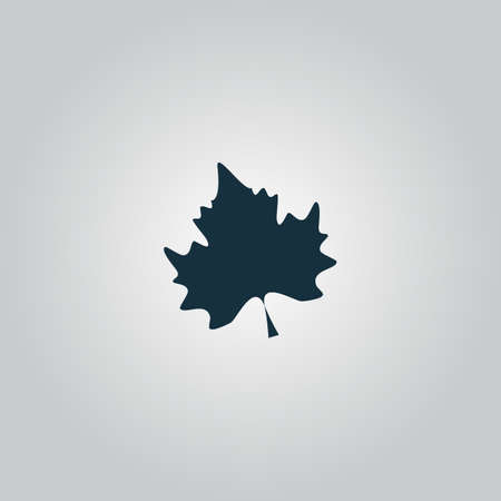 Maple Leaf. Flat web icon or sign isolated on grey background. Collection modern trend concept design style vector illustration symbol