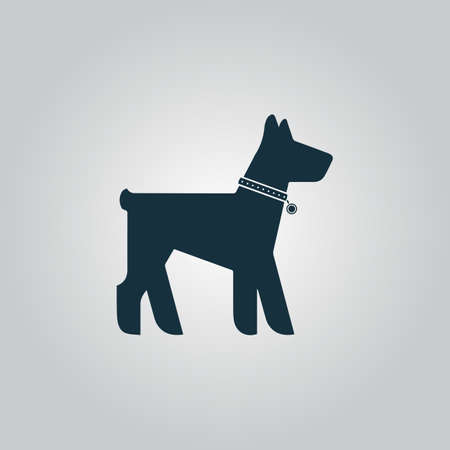 Dog. Flat web icon or sign isolated on grey background. Collection modern trend concept design style vector illustration symbol
