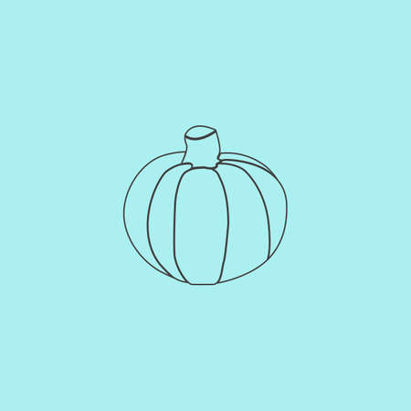Pumpkin. Simple outline flat vector icon isolated on blue background
