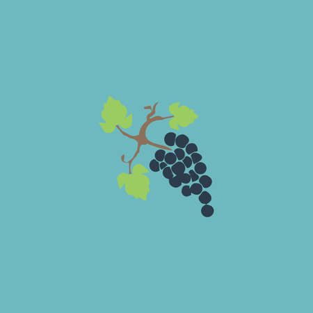 peasant household: Bunch of grapes. Colorful vector icon. Simple retro color modern illustration pictogram. Collection concept symbol for infographic project and logo