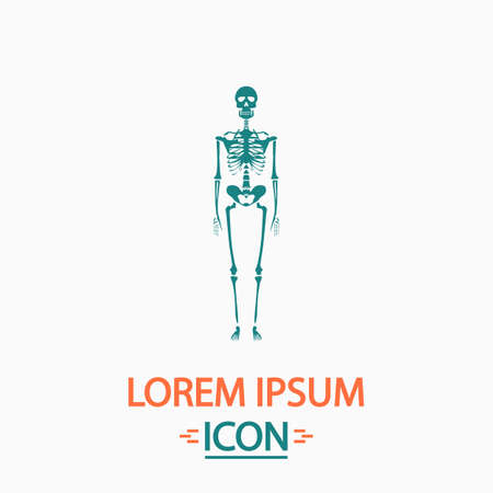 didactic: Skeleton Flat icon on white background. Simple vector illustration