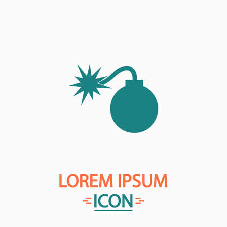 bombshell: Bomb Flat icon on white background. Simple vector illustration