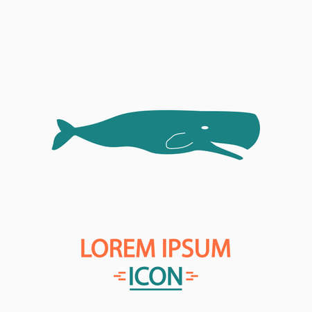 grampus: whale Flat icon on white background. Simple vector illustration