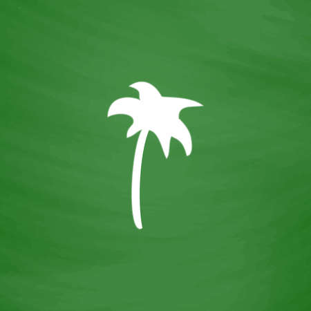Palm. Flat Icon. Imitation draw with white chalk on green chalkboard. Flat Pictogram and School board background. Vector illustration symbol Illustration