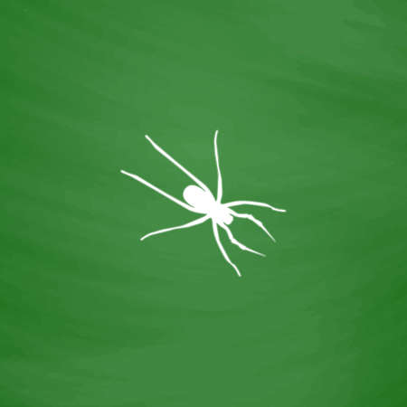 witchery: Spider. Flat Icon. Imitation draw with white chalk on green chalkboard. Flat Pictogram and School board background. Vector illustration symbol