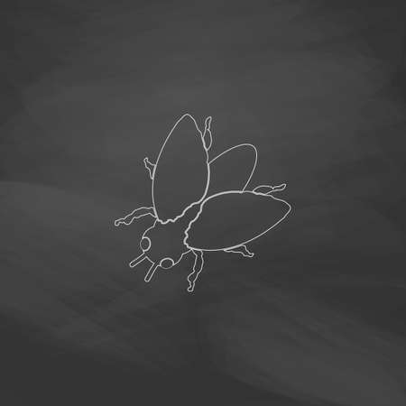 stag beetle: insect Simple line vector button. Imitation draw with white chalk on blackboard. Flat Pictogram and School board background. Outine illustration icon Illustration
