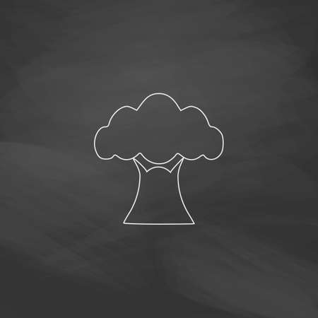 baobab: Baobab Simple line vector button. Imitation draw with white chalk on blackboard. Flat Pictogram and School board background. Outine illustration icon Illustration