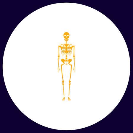 Skeleton Simple vector button. Illustration symbol. Color flat icon
