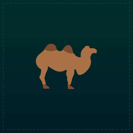 Camel. Color symbol icon on black background. Vector illustration