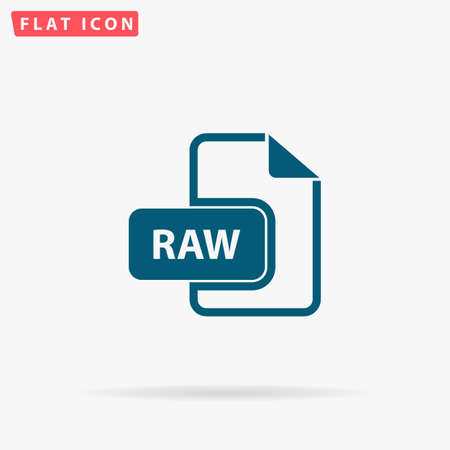 file type: RAW Icon Vector. Flat simple Blue pictogram on white background. Illustration symbol with shadow Illustration