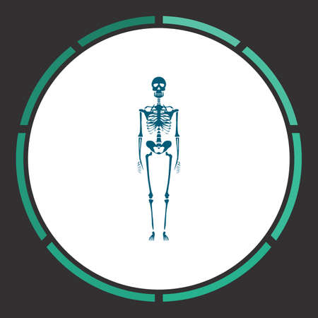 Anatomy Icon Vector. Flat simple Blue pictogram in a circle. Illustration symbol Illustration