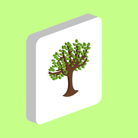 Maple Tree with Leaves Simple vector icon. Illustration symbol design template for web mobile UI element. Perfect color isometric pictogram on 3d white square. Maple Tree icons for business project