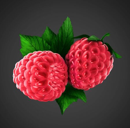 two raspberries with clipping path Stock Photo