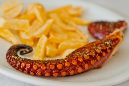 grilled octopus with fries