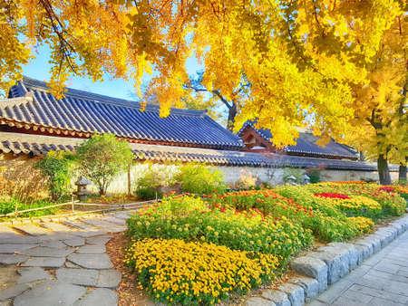 Street of Jeonju Hanok Village Traditional Korean Town, Jeonju, Jeollabukdo, South Korea, Asia 스톡 콘텐츠