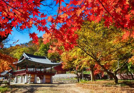 Automne de la montagne Gancheonsan, Sunchang, Jeollanamdo, Corée du Sud Asie