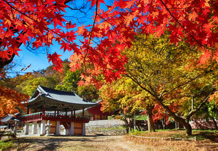 Autumn of Gancheonsan Mountain, Sunchang, Jeollanamdo, South Korea Asia