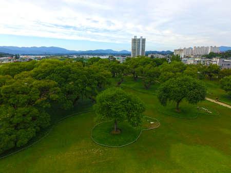 Aerial View of Seongbak Forest , Seongju, Gyeongbuk, South Korea, Asia