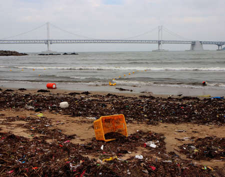 Environment pollution appear at gwangalli beach after typoon, Busan, South Korea, Asia Stockfoto