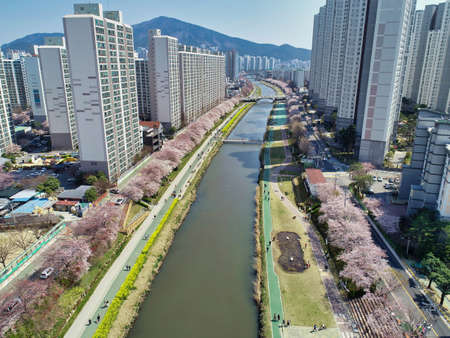 Spring of Oncheoncheon Citizens Park, Busan, South Korea, Asia