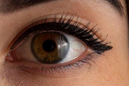 one human green brown female eye close up art 版權商用圖片