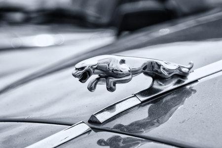 twenty four month old: BERLIN - MAY 11  Branded emblem car Jaguar 420  black and white , 26th Oldtimer-Tage Berlin-Brandenburg, May 11, 2013 Berlin, Germany