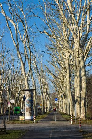 treptow: BERLIN, GERMANY - FEBRUARY 04, 2014: Sidewalk in the park Treptow-Koepenick