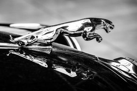 jaguar: BERLIN, Alemania - el 17 de mayo 2014: Hood ornamento (Jaguar en el salto) de la marca Jaguar 2 en blanco y Negro.. 27 Oldtimer Día Berlin - Brandenburg