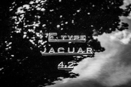 jaguar: BERLIN, ALEMANIA - 17 de mayo 2014: El emblema en el maletero del coche deportivo Jaguar E-Type 4.2. Blanco y negro. 27 Oldtimer Día Berlin - Brandenburg