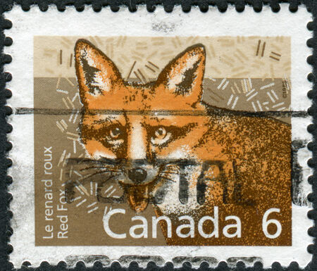 canada stamp: CANADA - CIRCA 1988: Postage stamp printed in Canada shows the mammal Red Fox, circa 1988 Editorial