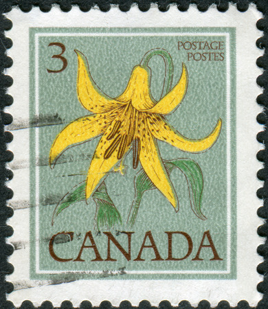 CANADA - CIRCA 1977: Postage stamp printed in Canada shows flower Canada lily, circa 1977