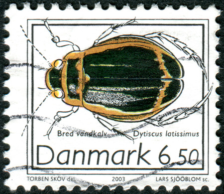 latissimus: DENMARK - CIRCA 2003: Postage stamp printed in Denmark, shows beetle Dytiscus latissimus, circa 2003
