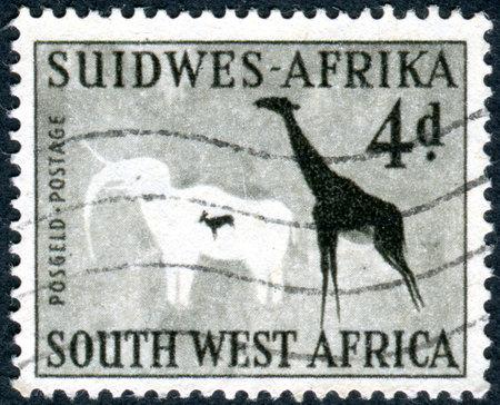 cave painting: SUR-ÁFRICA OCCIDENTAL - alrededor de 1954: Sello impreso en el suroeste de África, muestra elefante y la jirafa, pintura roca en las Phillips Cueva, montañas de Erongo, alrededor del año 1954