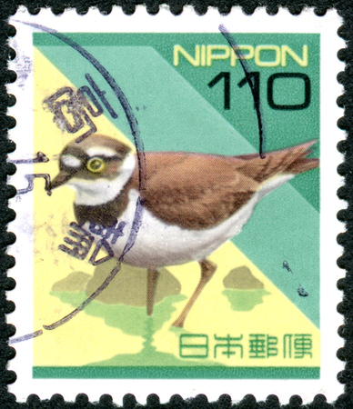 plover: JAPAN - CIRCA 1997: Postage stamp printed in Japan, shows Little Ringed Plover Charadrius dubius, circa 1997